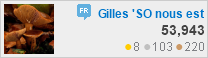 profile for Gilles at French Language & Usage